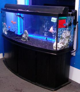 55 gallon bow front corner fish tank aquarium all glass for Bow front fish tank