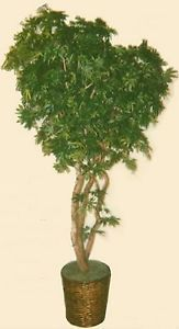 Artificial 7' Japanese Maple Tree Plant Bush in Basket Topiary Patio Home Palm