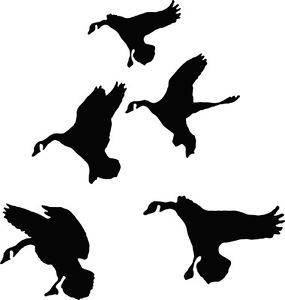 Ducks in Flight Waterfowl Hunting Decals Pro Grade Vinyl Easy to Apply 5 Decals