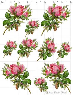 VF 20 Victorian Vintage Chic Shabby Style Pink Roses Waterslide Water Decals