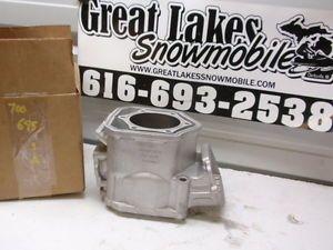 Ski Doo MXZ 700 Rotax Snowmobile Engine Cylinder 923695 Formula Z Deluxe