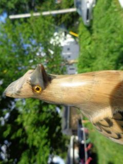 Vintage Bird Carved from Water Buffalo Horn Carving Glass Eyes Figure Figurine
