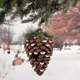 Rustic Pinecone Shaped Birdhouse Country Winter Hanging Bird House Garden Yard