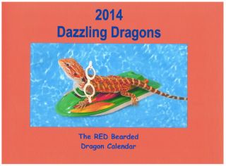The 2014 Dazzling Dragons Calendar Red Bearded Dragons