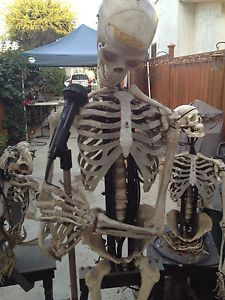 Haunted House Animatronics Props and Supplies
