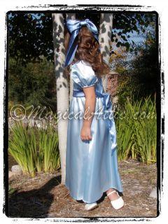 Custom Boutique Christmas Peter Pan Wendy Darling Blue Costume Girls Dress