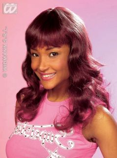 Ladies Burgundy Brown Wavey Wig Pop Star WWE Diva Beyonce Fancy Dress