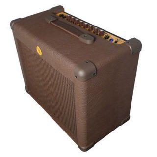 Michael Kelly KMAA30 30 Watt Acoustic Guitar Amplifier