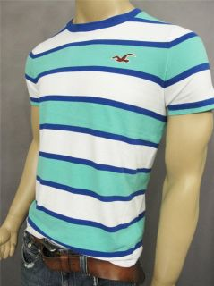 Hollister by Abercrombie Men Slim Muscle Fit Stripe T Shirt Tee