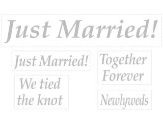 Just Married Newlyweds We Tied The Knot Sign Wedding Auto Window Glass Cling Set