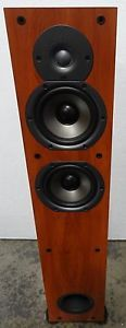 Polk Audio New Monitor 55T Two Way Ported Floorstanding Loudspeaker Cherry Used
