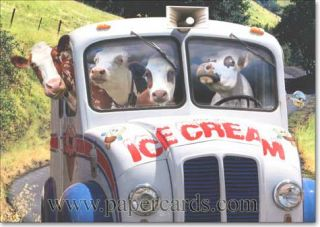 Cows in Ice Cream Truck Funny Birthday Card Greeting Card by Avanti Press