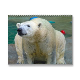 Animals of Brookfield Zoo Calendar