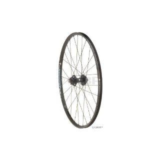 WTB LaserDisc Trail 29er SS rear wheel, 10x135 28h  Bike Wheels  Sports & Outdoors