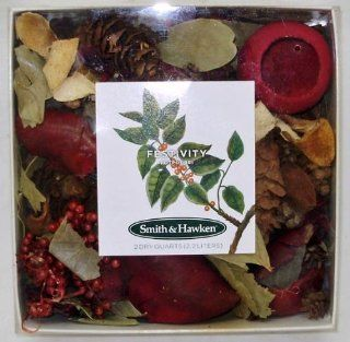Smith & Hawken   Festivity Potpourri (4 Pieces) [Kitchen]: Everything Else