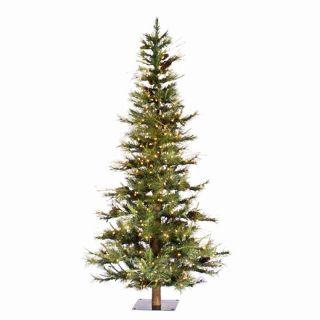 6 ft. Pre lit Clear Light Ashland Fir Christmas Tree with Wood Trunk   Christmas Trees
