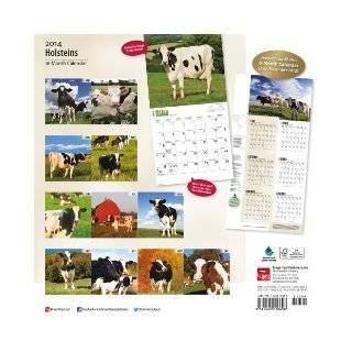 Holsteins 18 Month Calendar Browntrout Publishers 9781465010698 Books