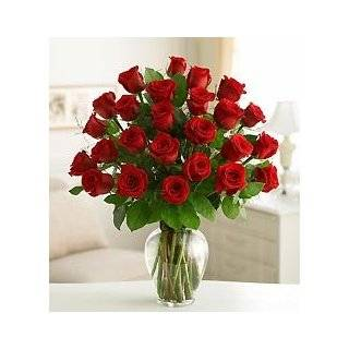Funeral Flowers by 1800Flowers   Two Dozen Red Roses for Sympathy: Grocery & Gourmet Food